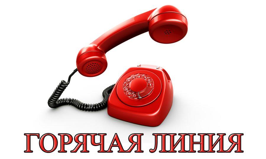 """Телефон """"горячей линии"""" по организации дистанционного обучения"""